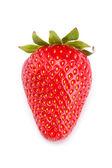 Jugoso fresa — Foto de Stock