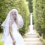 Bride in park — Stock Photo
