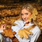 Autumn leaves — Stock Photo #17491273