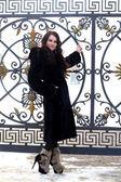 Beautiful young woman in black fur coat — Stock Photo