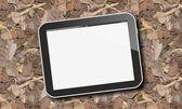 Tablet pc on autumn leaves — Stok fotoğraf
