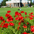 Thomas Jefferson's Monticello — Stock Photo