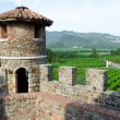 Stock Photo: View on NapValley from Castello di Amorosa, California