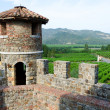 Stockfoto: View on NapValley from Castello di Amorosa, California