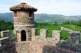 Ver en el valle de napa de castello di amorosa, california — Foto de Stock