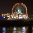 Stock Video: Carnival Ferris Wheel spins in night