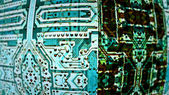 Circuit Boards 0233 — Stock fotografie