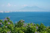 View of a volcano Vesuvius. Naples. Italy. — Stock Photo