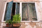 Volets, venise italie. — Photo