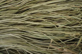Raffia texture — Stock Photo