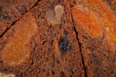 Background - fruit bread — Stock Photo