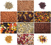 A set of dried fruits, nuts, legumes and cereals — Stock Photo