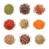 A collection of different spices on white background — Zdjęcie stockowe