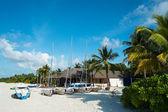A fragment of the beach (Maldives - Lhaviyani Atoll) — Stock Photo