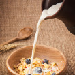 Healthy breakfast — Stockfoto #41044355