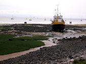 Barca nero e giallo 2 — Foto Stock