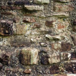Stock Photo: Repaired wall at Furness Abbey