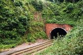 Tunel kolejowy — Zdjęcie stockowe