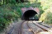 Tunnel ferroviaire 2 — Photo