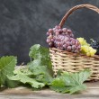 Bunch of white and red grape in a basket — Stock Photo
