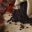 Black raisins in burlap bag over wooden table — Stock Photo