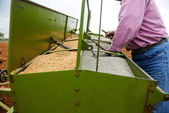 Loading seeding machine with wheat seeds and fertilizer — Stock Photo