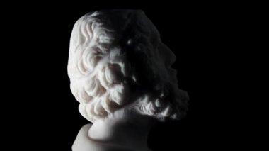 White marble of Homer — Stock Video