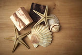 Soaps with starfish and shells — Stockfoto