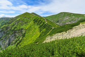 Path to Giewont. — Stock Photo
