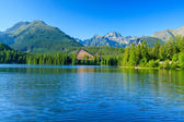 View of the Strbske Pleso and mountains. — Stock Photo