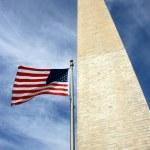 Washington D.C. — Stock Photo #13311306