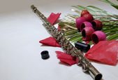 Flute and flowers — Stock Photo
