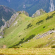 Royalty-Free Stock Photo: Tatra Mountains in summer, Poland