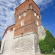 Stock Photo: Wawel, Krakow