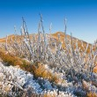 Stock Photo: Bieszczady National Park, Poland