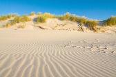 Dune on Beach at Sunset — Stock Photo