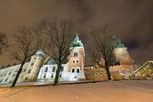 Wawel Hill by night - Krakow — Stock Photo