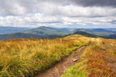Beautiful autumn mountain — Stock Photo