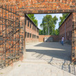 Auschitz Birkenau, fascist extermination camp ,Poland — Stock Photo