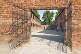 Auschitz Birkenau, fascist extermination camp ,Poland — Stock Photo
