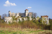 Castle Rudno - Poland. Medieval fortress in the Jura region — Stock Photo