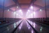 Kotlarski pont, cracovie, pologne — Photo