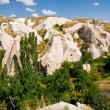 Cappadocia — Stock Photo #18035993