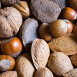 Mixed nuts in the shell selection of Brazil,almonds,walnut and hazelnuts — Stock Photo