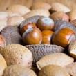 Mixed nuts in the shell selection of Brazil,almonds,walnut and hazelnuts — Stock Photo #18152641