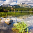 Strbske Pleso, lake in Slovakia in High Tatras — Stock fotografie