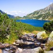 Summer in 5 lakes valley in High Tatra Mountains - Stock Photo