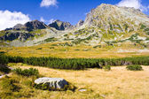 Summer in 5 lakes valley in High Tatra Mountains — Stock Photo