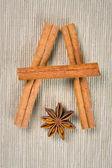 Cinnamon, cloves and anise — Stock Photo