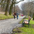 ein paar walking im Forest park — Stockfoto